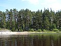Лахденпохский р-н. Остров Миконсаари - panoramio (1).jpg
