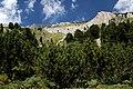 Национален парк Пирин - NP01 - локация Бандеришки езера-река Глазне No1.jpg