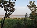 Острова на р. Зея, напротив Мухинки, 2011 г.jpg