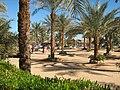 Пляжи Наамы-Бей (Шарм-эль-Шейх, Египет).jpg