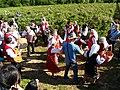 Ритуалът Розобер в село Розово.JPG
