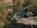 Річка Кам'яека, джерело.jpg