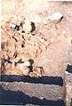Сонда, неолитско налазиште Благотин (3).jpg