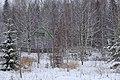 Уединенный дом - panoramio.jpg