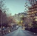 شارع جواهر لال نهرو بدمشق المالكي.jpg