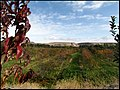 طبیعت پاییزی روستای میمونق - panoramio (2).jpg