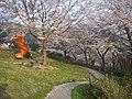 うつぶな公園 - panoramio (14).jpg