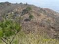 烧伤的山 - panoramio.jpg