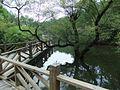 通往石门湖码头的桥 - Bridge to Shimeng Lake Wharf - 2010.07 - panoramio.jpg