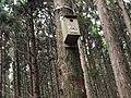 野馬瞰步道 Yemakan Trail - panoramio (3).jpg