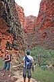 .0 2144 Purnululu National Park - Hiking trails.jpg