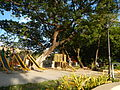 0001jfEast West Bajac-bajac Park Tapinac Olongapo City Zambalesfvf 17.JPG
