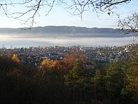 05 BoLu im Nebel 11.06.JPG