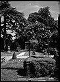 10.06.1964. Vue de la propriété. (1964) - 53Fi4688.jpg
