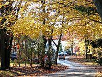 1462599 Dix-Hills-in-the-fall 620.jpg