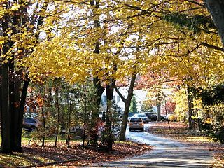 Dix Hills, New York Hamlet and census-designated place in New York, United States