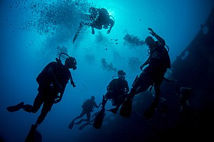 Sri Lanka Navy - Sri Lankan Navy divers and US Navy divers during a joint diving exercise in the Apra Harbor off the coast of Guam