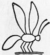 1911 Britannica - Bee - Sign.png
