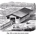 19th century knowledge shed for soiling sheep.jpg
