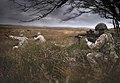 1 RIFLES Exercising on Sennybridge Training Area MOD 45165154.jpg