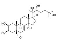 beta ecdysteroids