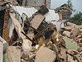 2008년 중앙119구조단 중국 쓰촨성 대지진 국제 출동(四川省 大地震, 사천성 대지진) IMG 5982.JPG