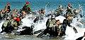 2013.4.9 해병대 교육훈련단 특수수색교육 Republic of Korea Marine Cops Special Search Trining of Republic of Korea Marine Cops (8638826875).jpg