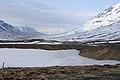 2014-04-29 17-11-15 Iceland Norðurland Eystra - Akureyri.JPG
