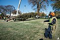 2014 Capitol Christmas Tree Arrival (15681711998).jpg