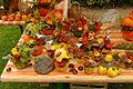 2015-10-17 11-08-01 marche-plantes-belfort.jpg