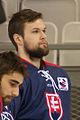 20150207 1756 Ice Hockey AUT SVK 9497.jpg