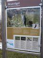 20150219 124 Wienerwaldsee (Large) (16581008522).jpg