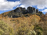Rocky cliffs extending above a forested hill in fall colors