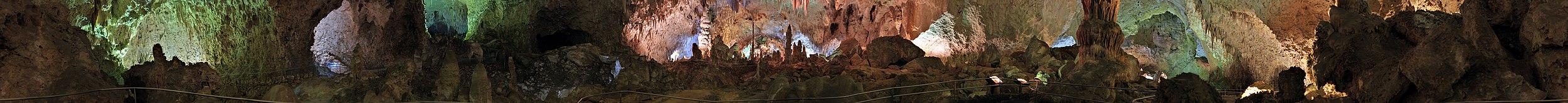 202 - Grotte de Carlsbad - Février 2010.jpg