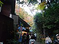 2 Minookōen, Minoo-shi, Ōsaka-fu 562-0002, Japan - panoramio (11).jpg