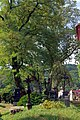 4.9.15 Pisek Puppet and Beer Festivals 035 (21159115321).jpg