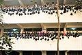 50th Convocation of Dhaka University.jpg