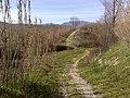 63077 Monsampolo del Tronto, Province of Ascoli Piceno, Italy - panoramio - adbascoli.jpg