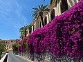 8 Taormina (112) (12879250043).jpg