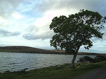 English: A Cloudy Day At Lochindorb
