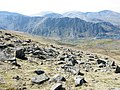 A boulder field on the north-western slope of Y Garn - geograph.org.uk - 428883.jpg