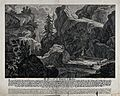 A chamois is shot by a hunter in a mountainous range after b Wellcome V0021034.jpg