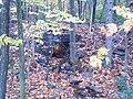 Abandoned PA Turnpike (2988208683).jpg