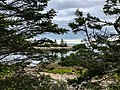 Acadia National Park (06b9eb27-bbf2-4fec-acb0-233f21192c3f).jpg