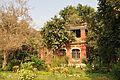 Acharya Jagadish Chandra Bose Indian Botanic Garden - Howrah 2011-01-08 9801.JPG