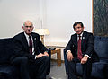 Ahmet Davutoglu and George Papandreou in Greece.jpg