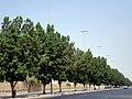 Al Samawal St. Jeddah - panoramio.jpg