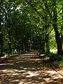 Alleyway - panoramio.jpg