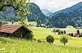 Alpen-Landschaft.jpg