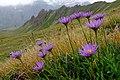Alpy, Aosta, Itálie, Švýcarsko, imgp5610 (2016-08).jpg
